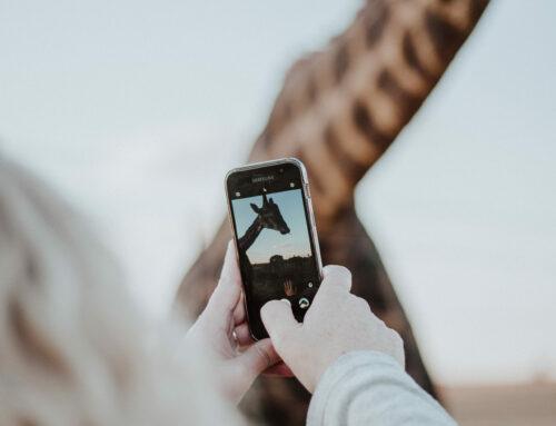 Social-Media-Marketing für KMU: 7 Tipps für den Einstieg